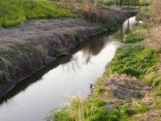 多々良川で女性の遺体が発見される事件から丸2年が経過しました