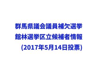 群馬県議会議員補欠選挙(館林市選挙区)情報(2017年5月14日投票)
