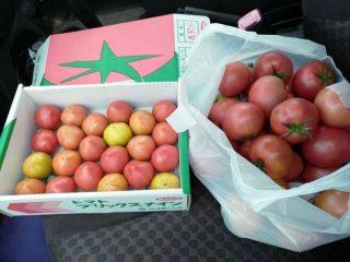 館林が誇るブリックスナインで最高のトマトジュースを作る