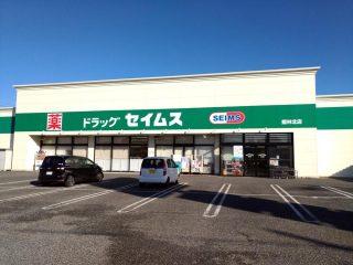 館林市内の各ドラッグストア店舗数を調べてみた(+板倉町)