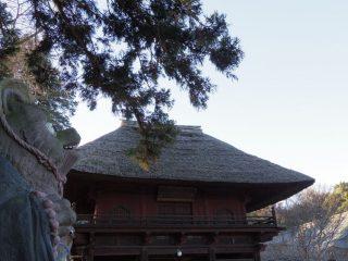 【受付終了】4月14日「夏隊帰還記念よりもいを語る会」を開催します!!