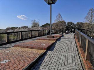 3月31日「ふれあい橋」橋上でカフェをオープン!好評につき4月7日にも開催!!