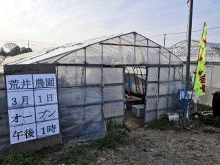 荒井農園でブリックスナインの販売が始まっている