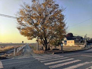 今週の館林 2020年11月23日〜